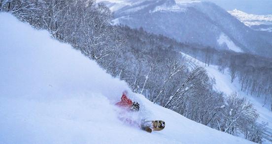 Dorsale ski - snowboard adulte